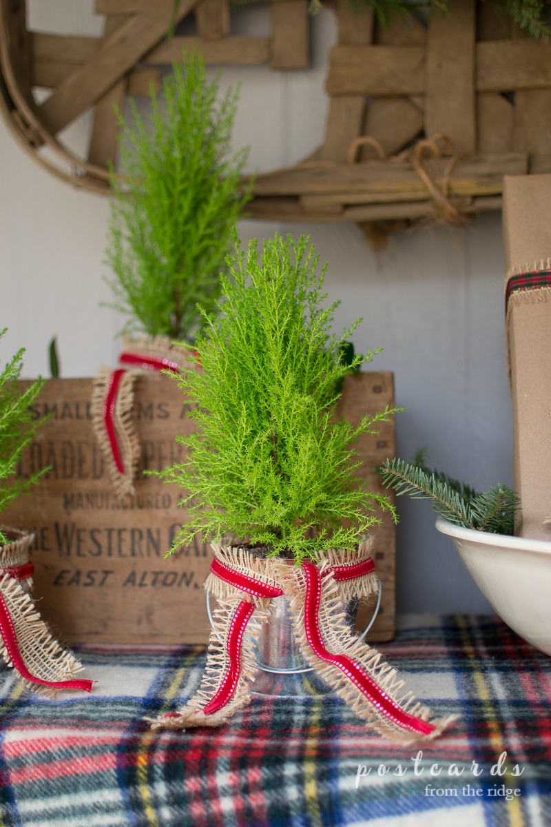 Such sweet little trees! Lots of other great ideas for Christmas porch decorating on this site.
