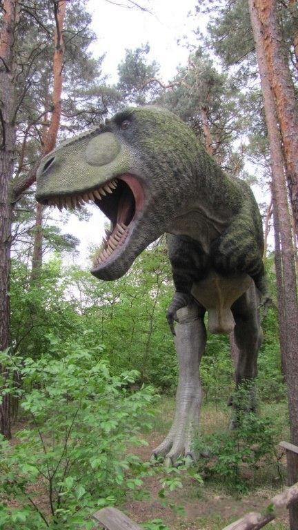 Nice Images  Wallpaper Dinosaur Park in Poland