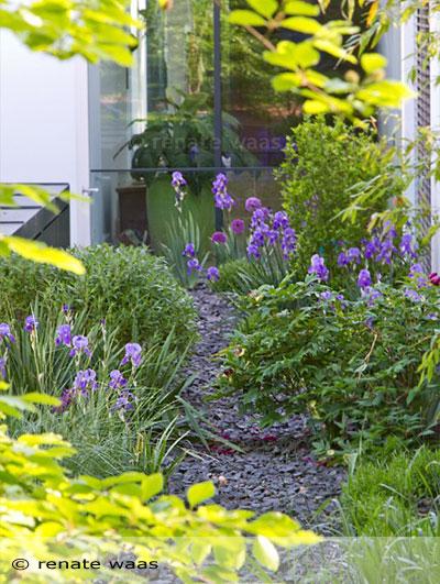 Pflanzplanung Staudenplanung und Gartenplanung für schöne, pflegeleichte Blumenbeete Renate Waas