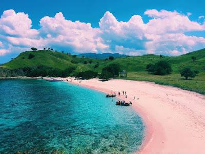 Keindahan dan Keunikan Pantai Pink Komodo