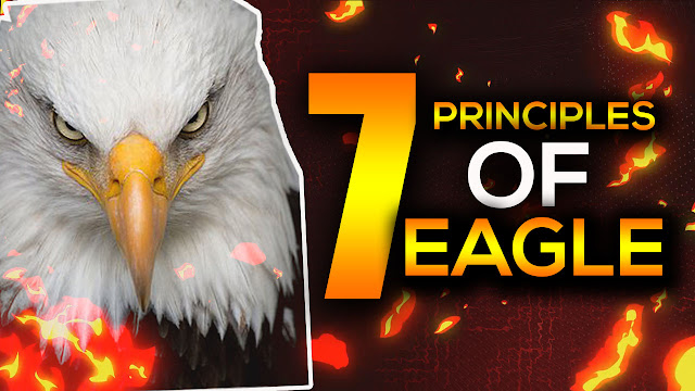 7 Principles Of Eagle