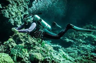 غطاسة مصرية, شيماء تتحدى ظلام الماء, انتشال الجثث, انتشال الجثث من الاعماق, شيماء,