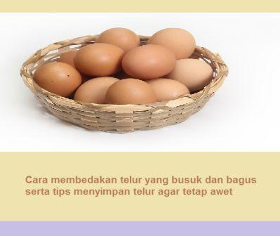 Cara membedakan telur yang busuk dan bagus serta tips menyimpan telur agar tetap awet