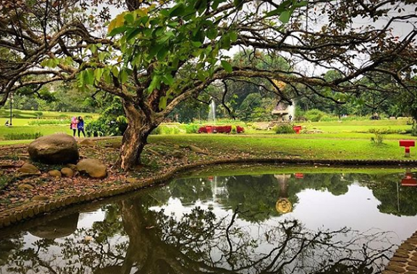 Tempat Wisata Alam di Bogor yang Hits Kebun Raya