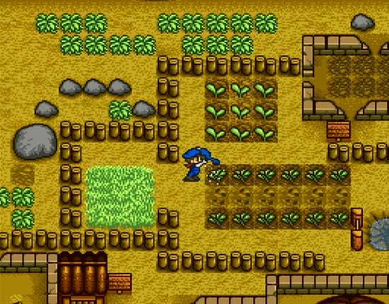 O início da maior colheita dos games em Harvest Moon (SNES