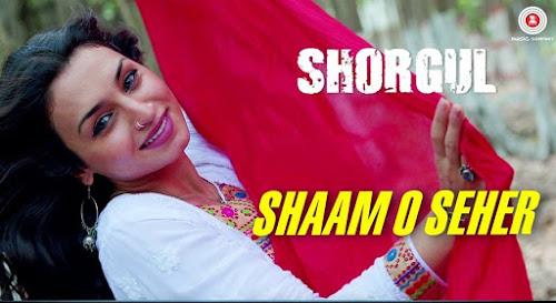 Shaam O Seher - Shorgul (2016)