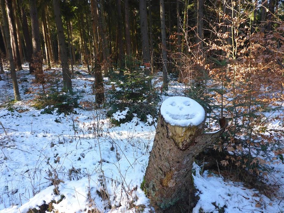 Лес, зима, смайлик