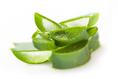 aloe vera for treating scars and injury