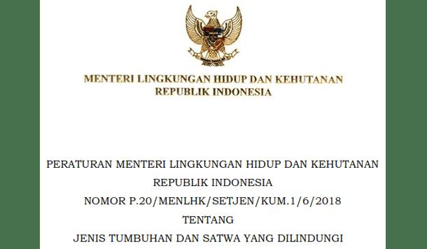 Berikut ini adalah berkas Peraturan Menteri Lingkungan Hidup dan Kehutanan RI Nomor  Permen LHK Nomor 20 Tahun 2018 Tentang Jenis Tumbuhan dan Satwa yang Dilindungi