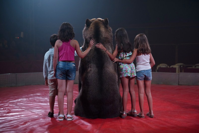 Crianças com urso no circo