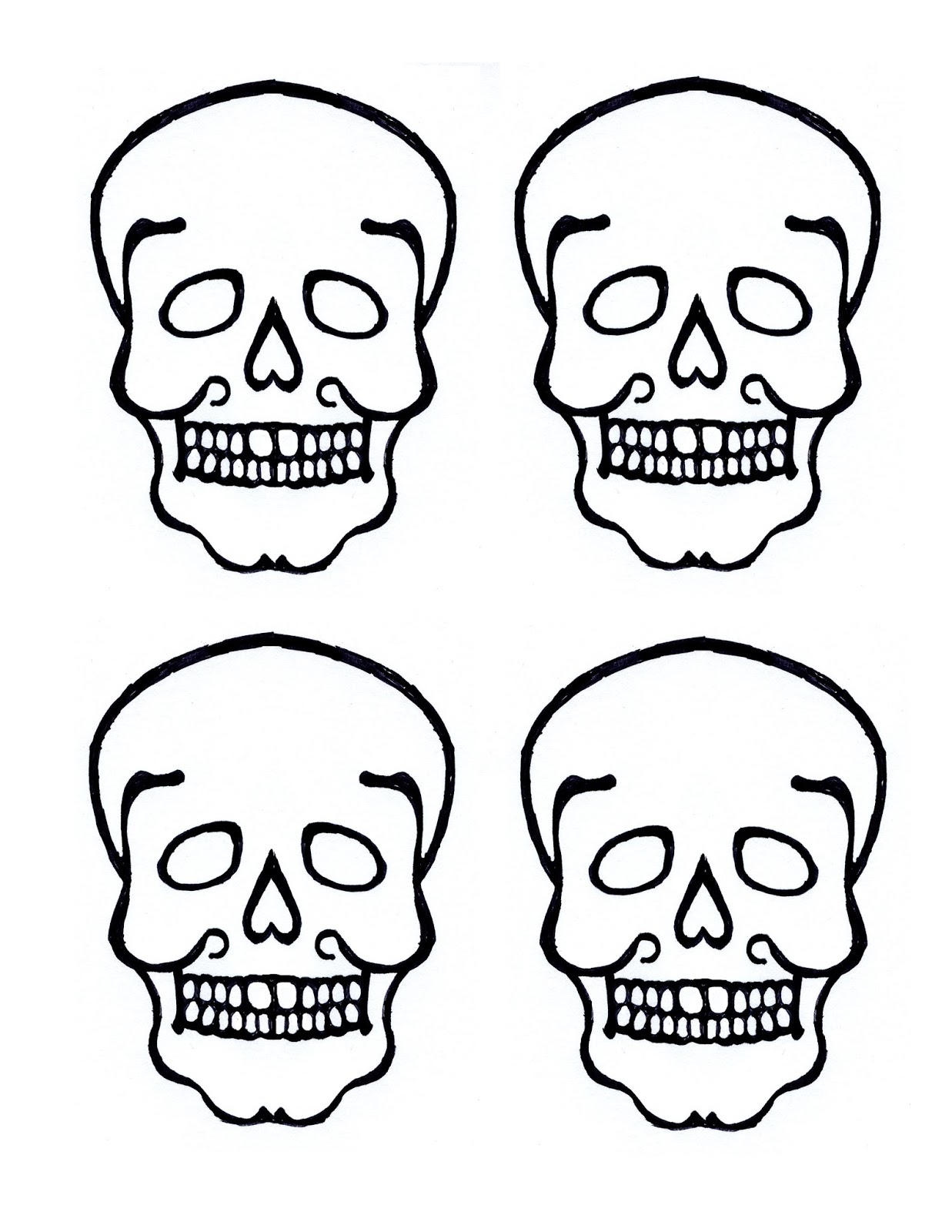 Skull Worksheet Apologia