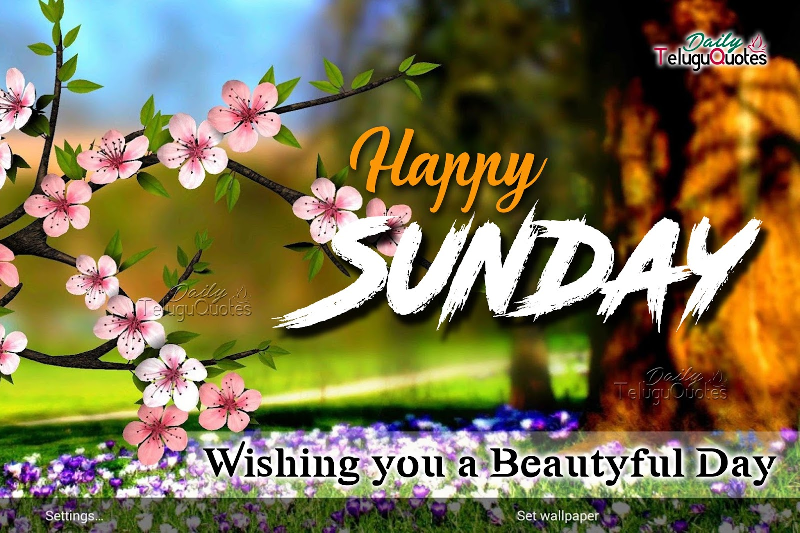 Sunday Quotes Images Happy Sunday Quotes And Sayings Hd Wallpapers  Dailyteluguquotes