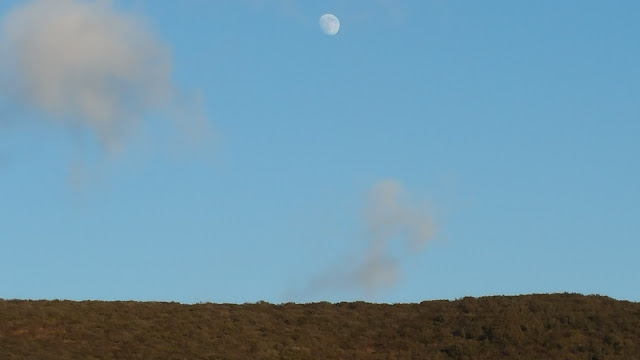 A risen moon against blue sky and brown earth.