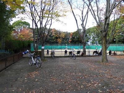 王仁公園・秋の紅葉ウォーキング テニスコート