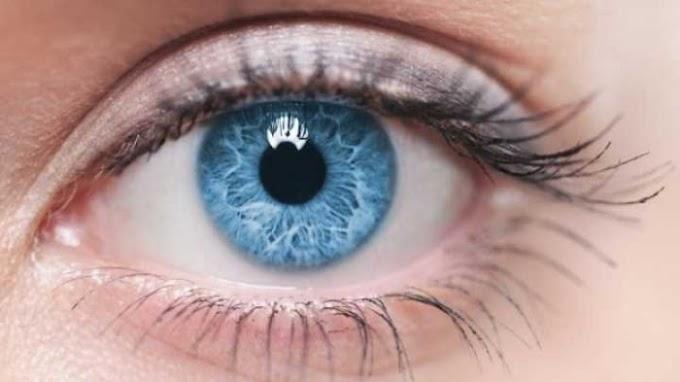 Perbedaan Keakuratan Pemindaian Scan Retina dan Scan Iris