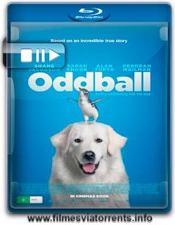 Oddball e os Pinguins Torrent - BluRay Rip 720p e 1080p Dual Áudio