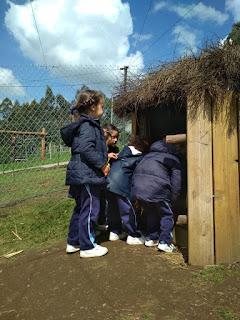 http://colexiocalasancias.es/dt_gallery/excursion-1oa-2-oa-e-3ob-de-e-i-2/