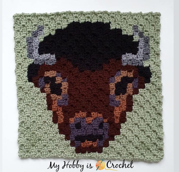 Buffalo C2C Square - Free Pattern