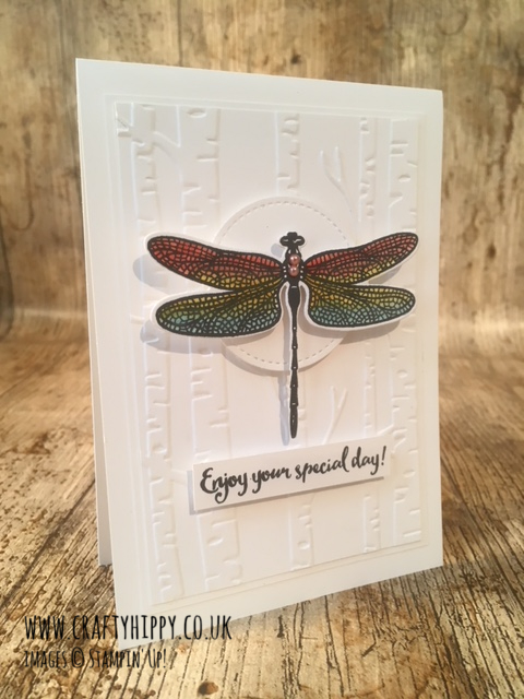 This is a handmade dragonfly card created by Lauren Huntley, Stampin' Up! Independent Demonstrator for the UK, using the Dragonfly Dreams stamp set by Stampin' Up!