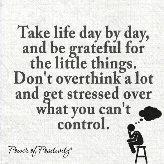 Inspirational Life Quotes And Sayings You Can T Control: Be Grateful For The Little Things