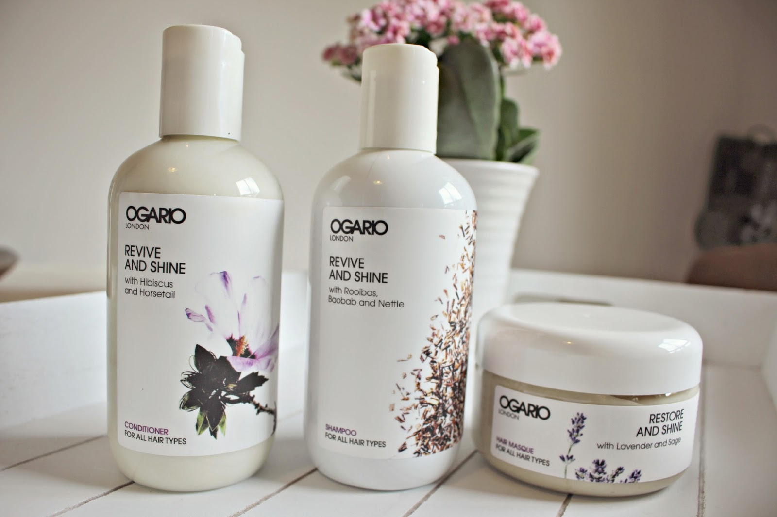 Getting Glossy with Ogario Revive & Shine - Fashion Mumblr