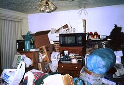Hoarding in Living Room