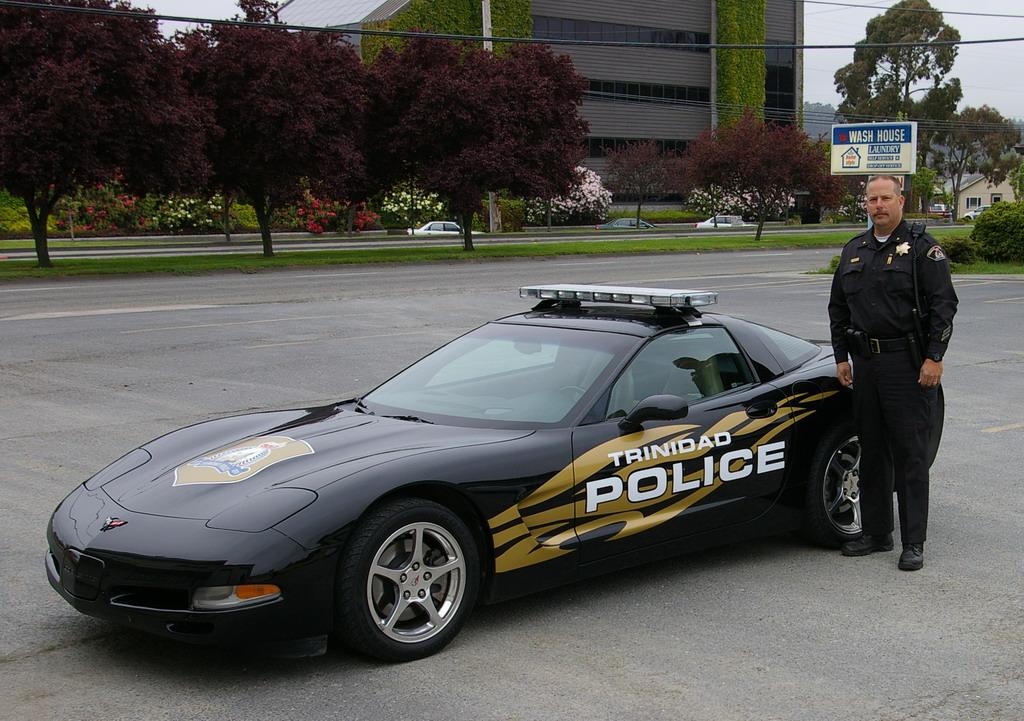 cool police cars derpfudge. Black Bedroom Furniture Sets. Home Design Ideas