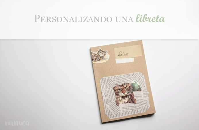 diy personalizando libreta idea video