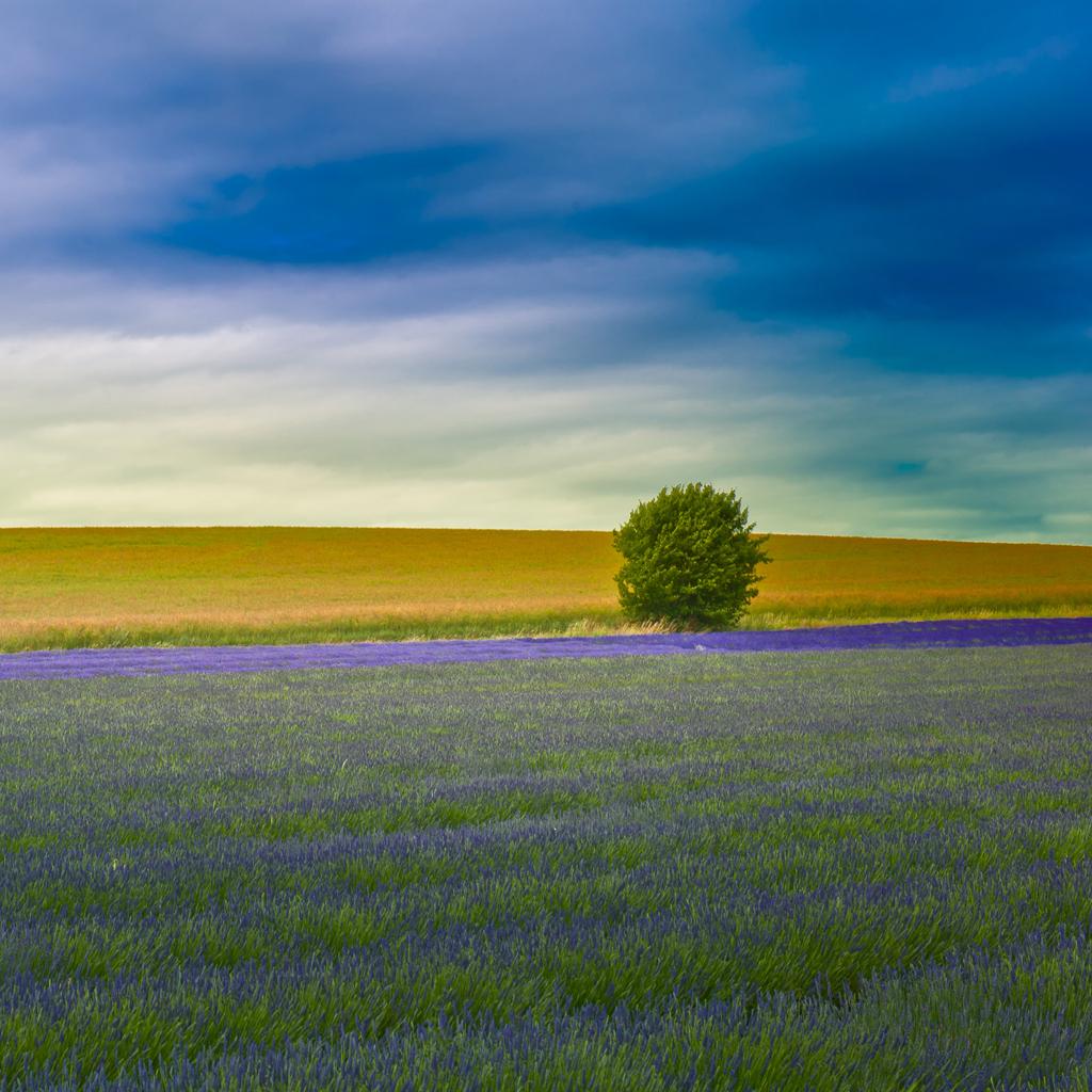 Ipad Nature Wallpaper Free Ipad Retina Hd Wallpapers
