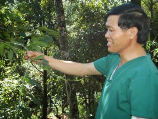 lương y Nguyễn Vinh Quang