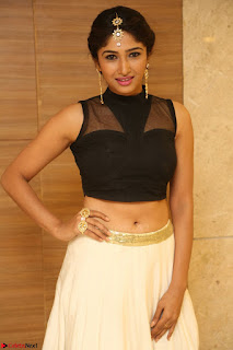 Roshni Prakash in a Sleeveless Crop Top and Long Cream Ethnic Skirt 120.JPG