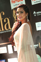 Prajna in Cream Choli transparent Saree Amazing Spicy Pics ~  Exclusive 031.JPG