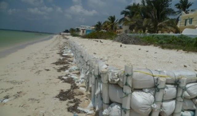 Clausura Profepa construcción de muro de contención en Telchac Puerto