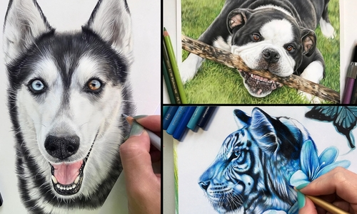 00-Kelly-Lahar-Realism-with-Animal-Portrait-Drawings-www-designstack-co