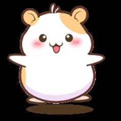 Latte The Hamster
