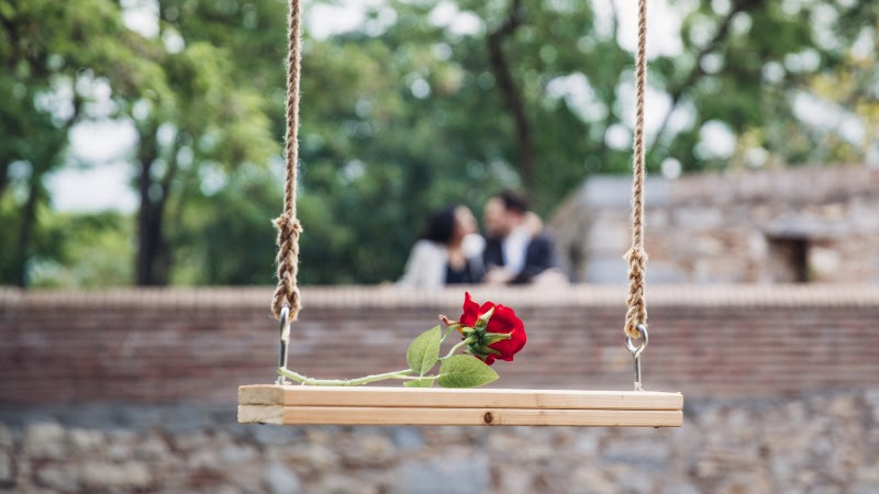 Red Rose and in Love Couple HD