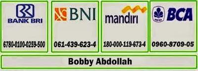 c5ad1-bobby_abdullah255b1255d.jpg