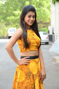 Yamini Bhaskar at Titanic movie press meet-thumbnail-16