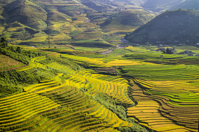 Excursion the beautiful destinations of Vietnam in this September 1