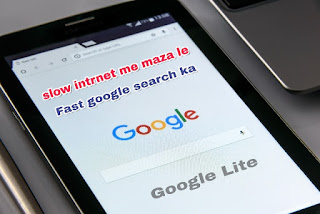 Google Lite Version