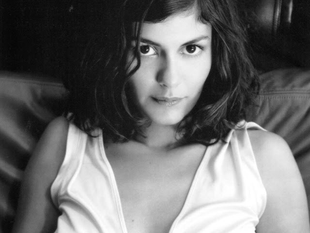 Audrey Tautou Hot Pictures, Photo Gallery  Wallpapers-4179