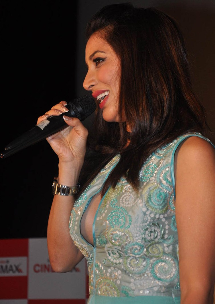 Super About Bollywood Sophie Choudry Accidental Nipple