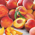 Marvelous Health Benefits of Peach Fruit