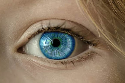 The Computer Vision Syndrome : What Is It?