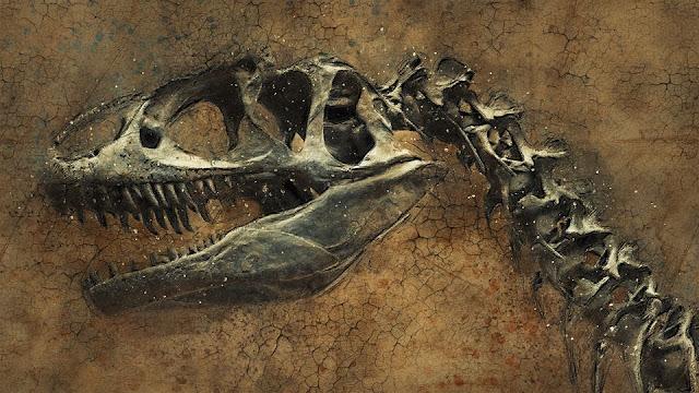 حقائق,حقائق عن الحفريات,علم الحفريات,fossil,ديناصور,حفرية,أحفورة