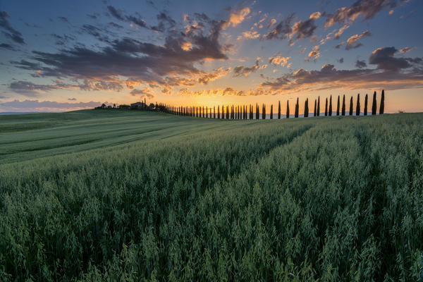 Agriturismi in val d 39 orcia - Agriturismo bagno vignoni terme ...