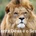 Deus é nosso Rei e mestre (Reflexões cristãs)