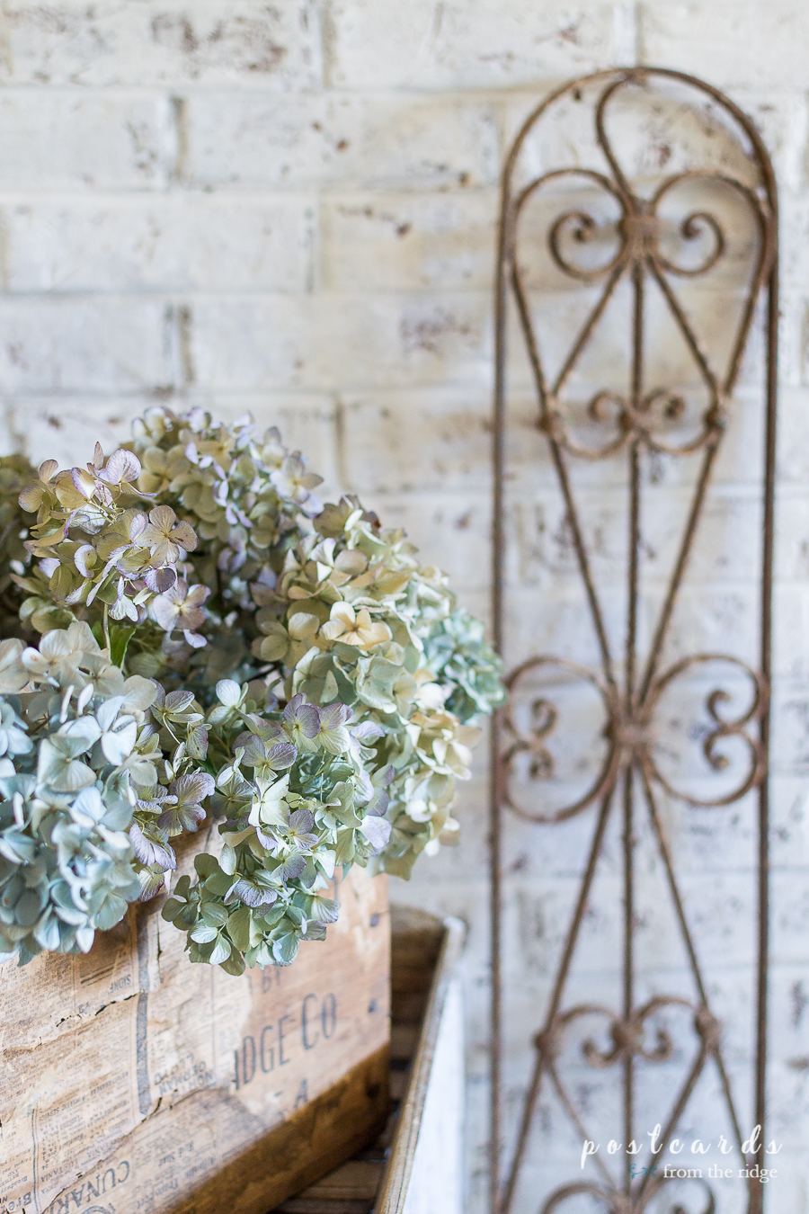dried hydrangeas in an antique wooden crate