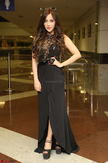 Angela Krislinzki in Transparent Black Gown at Rogue Movie Teaser Launch 1st March 2017 044.JPG