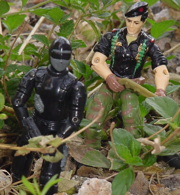 Action Force Stalker, Snake Eyes, European Exclusive, Palitoy, Funksool Flint